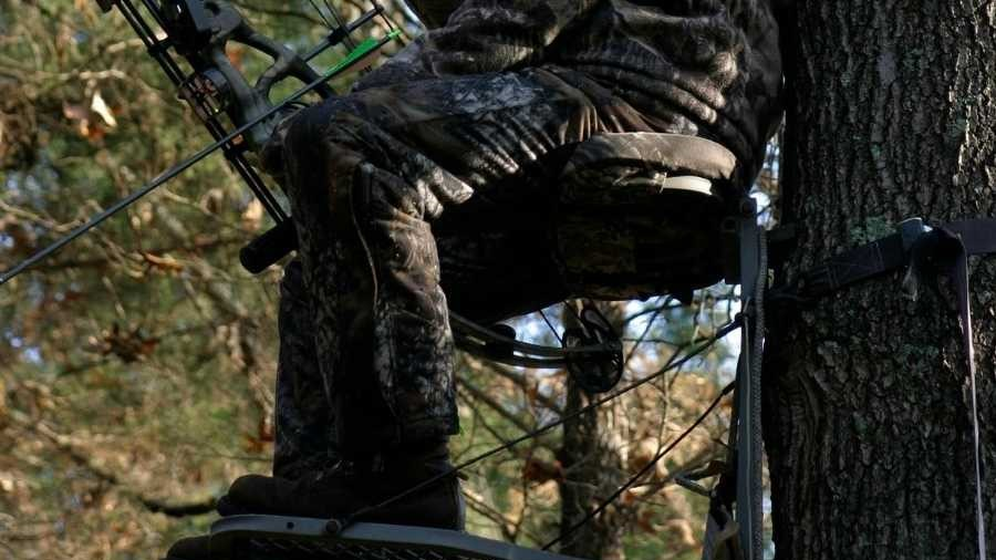 Hunting Seat Cushion featured