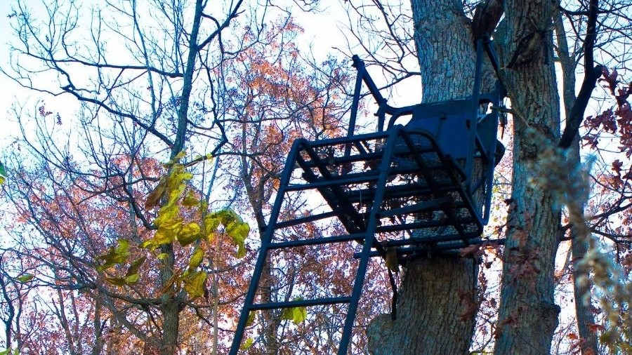Tree Stand Safety Harness _ 2